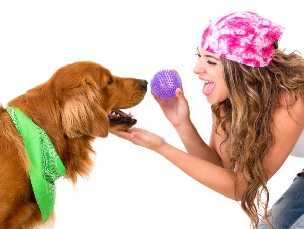 10 Façons amusantes de stimuler mentalement votre chien