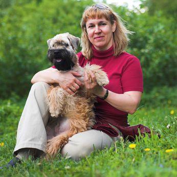 10 Choses à aimer sur le tempérament de terrier Wheaten enrobé doux