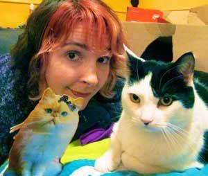 Demandez à une dame de chat: comment puis-je obtenir mon vieux chat à faire avec mon nouveau chat?