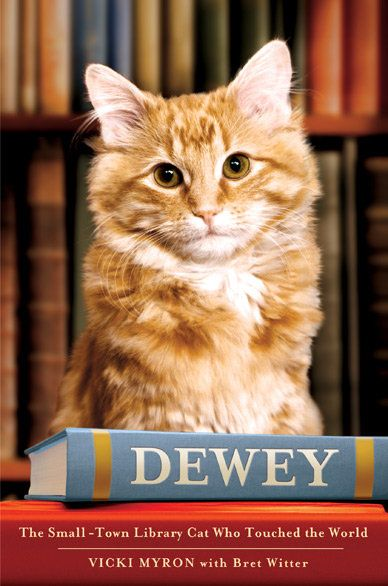 Book review: dewey the small-town library cat who touched the world