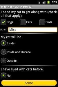 Adoption de chat? Il y a une application pour ça