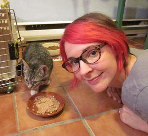 Vidéo originale de Catster: que faire avec les voleurs de nourriture féline dans votre maison