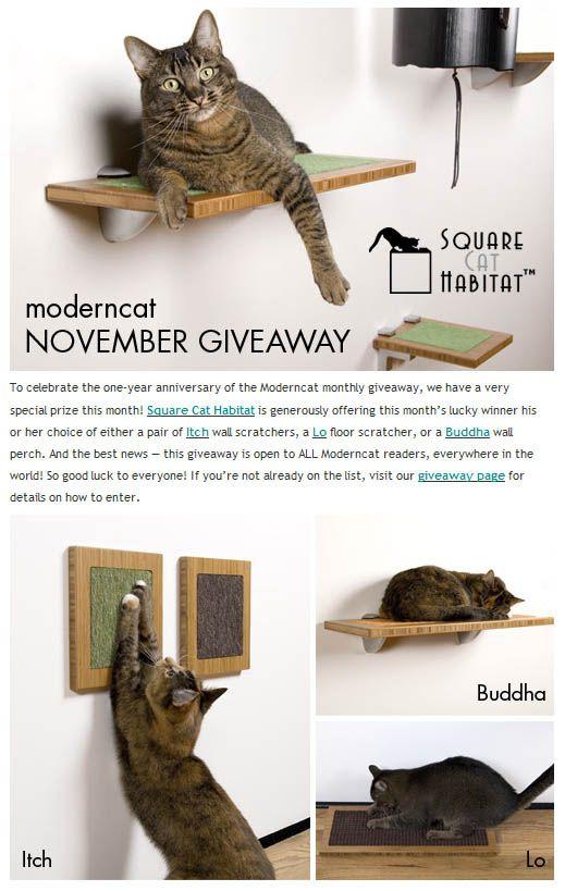 Giveaway: rayures élégantes de l`habitat du chat carré ou perchoir