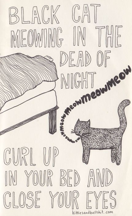 """""""If you liked it then you shoulda put a cat on it"""" and other lyrics made way better by cats"""