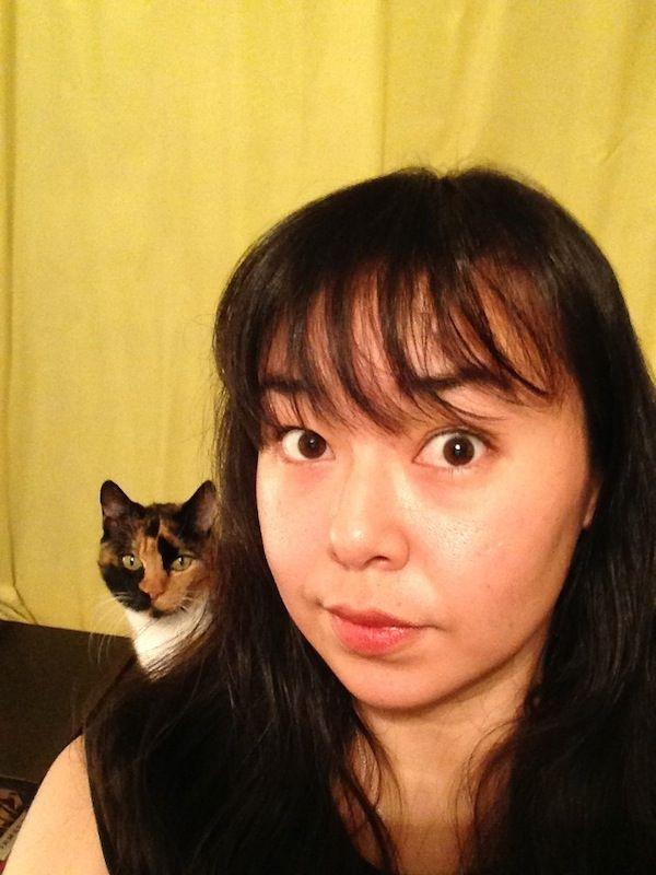 Kasha le chat et ses amis mangeurs de cadavres: rencontrez les minous mignons du Japon