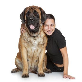 Le tempérament Mastiff - apprendre à connaître ses traits faciles mais courageux
