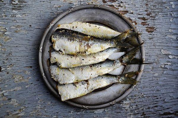 Plaque de métal pleine de sardines