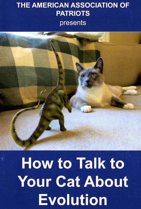 Que peut faire votre chat pour les Etats-Unis? Nous demandons à l`association américaine des patriotes